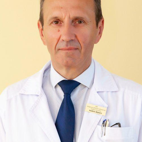Andris Ķipurs